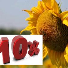 Estate Umbria 3 -10%